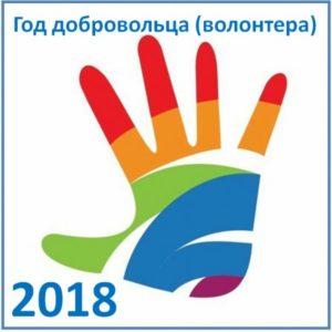 2018-год Волонтерства